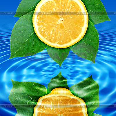 Lemon slice and leaves reflected in water   High resolution stock photo  ID 3033094