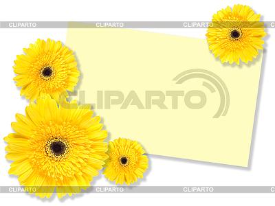 메시지 카드와 함께 노란 꽃 | 높은 해상도 사진 |ID 3033130