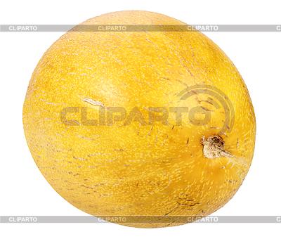 Ripe yellow melon   High resolution stock photo  ID 3033193