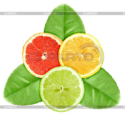 Trzy plasterki owoców cytrusowych na zielonych liści   Foto stockowe wysokiej rozdzielczości  ID 3033217
