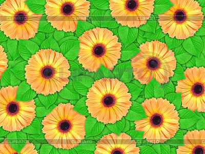 Tło z kwiatów pomarańczy i liści | Foto stockowe wysokiej rozdzielczości |ID 3144378