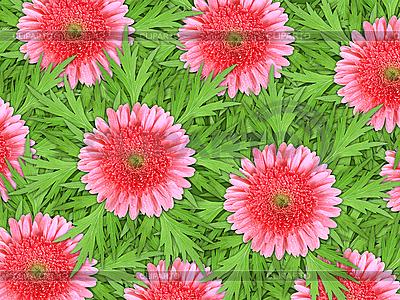 Фон розовые цветы и зеленые листья | Фото большого размера |ID 3144379