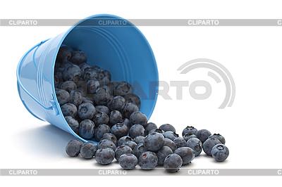 Heidelbeeren in einem Eimer | Foto mit hoher Auflösung |ID 3013199