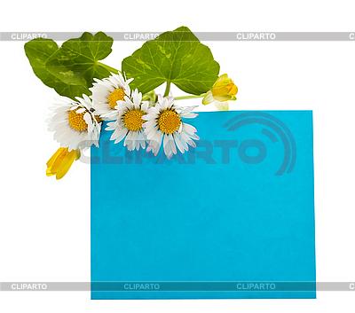 Blaues Panel für Text mit Blumen | Foto mit hoher Auflösung |ID 3013812