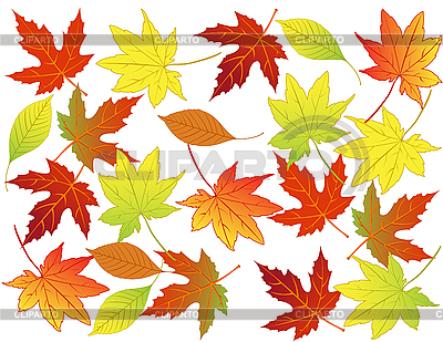 Herbst-Hintergrund | Stock Vektorgrafik |ID 3014085