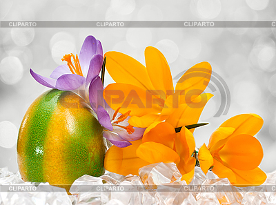 Easter egg with flowers | High resolution stock photo |ID 3014583