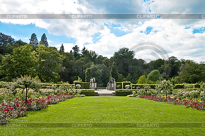 Park of roses. Germany, Baden-Baden. | High resolution stock photo |ID 3018733