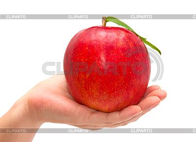 Roter Apfel im Hand | Foto mit hoher Auflösung |ID 3018870