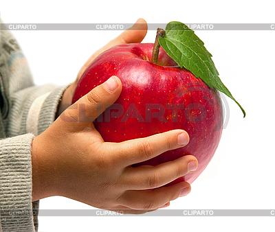 Roter Apfel in der Hände von Kinder | Foto mit hoher Auflösung |ID 3018871