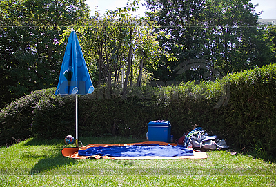 Miejsce na piknik w słoneczny dzień. | Foto stockowe wysokiej rozdzielczości |ID 3019293