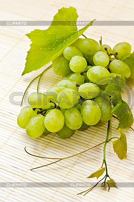 Bunch of white grapes with drops of dew | High resolution stock photo |ID 3024982