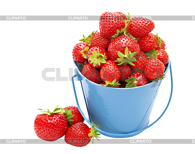 Strawberries in bucket on white background. | High resolution stock photo |ID 3031507