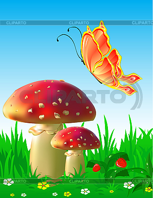 Mushrooms and butterfly   Stock Vector Graphics  ID 3125740