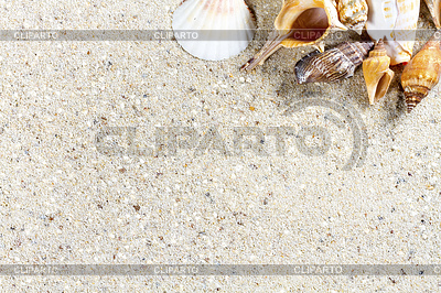 Travel background with sand and shells. Summer beach | High resolution stock photo |ID 5857847