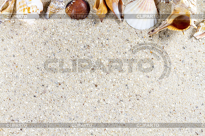 Travel background with sand and shells. Summer beach | High resolution stock photo |ID 5857848