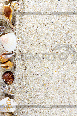 Travel background with sand and shells. Summer beach | High resolution stock photo |ID 5857849