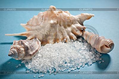 Three sea shells with dead sea salt on blue | High resolution stock photo |ID 3016833