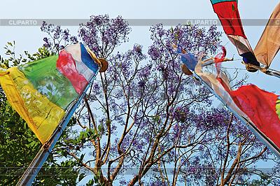 푸른 하늘 및 나무의 앞에 색깔의기도 깃발   높은 해상도 사진  ID 3016990