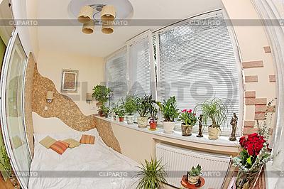 Sunny sypialni na balkonie z okna i rośliny | Foto stockowe wysokiej rozdzielczości |ID 3017254