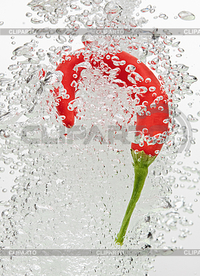 Chilli pepper falling in water with air bubbles | High resolution stock photo |ID 3024483