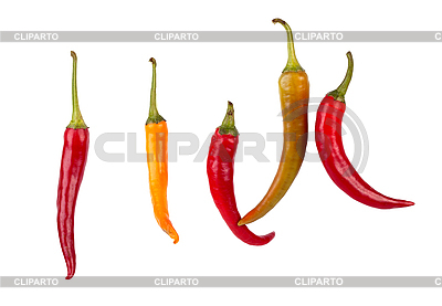 Chili | Foto mit hoher Auflösung |ID 3017306