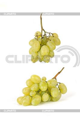 Weintrauben | Foto mit hoher Auflösung |ID 3017308