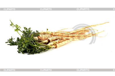 Parsley | High resolution stock photo |ID 3017471