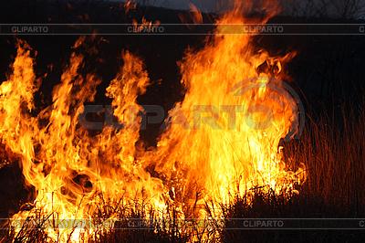Potężny płomień ognia | Foto stockowe wysokiej rozdzielczości |ID 3017499