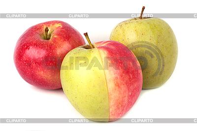 Czerwone i zielone jabłka | Foto stockowe wysokiej rozdzielczości |ID 3017502