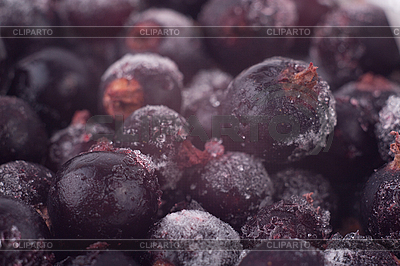 Frozen black currant | High resolution stock photo |ID 3017523