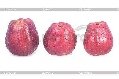 Red trzy jabłka z kropli wody. | Foto stockowe wysokiej rozdzielczości |ID 3017700
