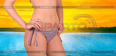Bikini | Foto mit hoher Auflösung |ID 3018894