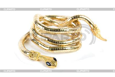 Golden bransoletka wąż | Foto stockowe wysokiej rozdzielczości |ID 3019375