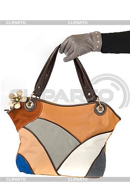 손을 여성 가방 | 높은 해상도 사진 |ID 3019417