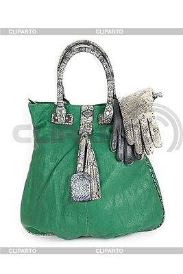 Green women bag | High resolution stock photo |ID 3019630