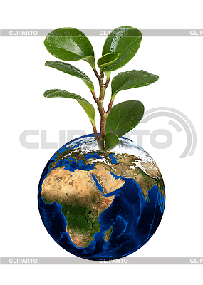 Earth planet with sprout | High resolution stock photo |ID 3021460