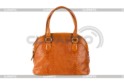 Brown women bag | High resolution stock photo |ID 3028506