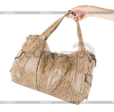 Women leather bag at hand | High resolution stock photo |ID 3028511