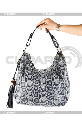 Women bag at hand | High resolution stock photo |ID 3028513