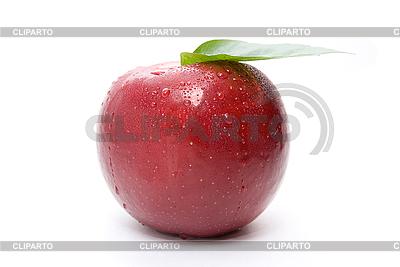 Świeże czerwone jabłko | Foto stockowe wysokiej rozdzielczości |ID 3029446