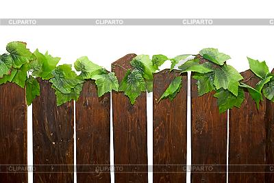 Rural fence | Foto stockowe wysokiej rozdzielczości |ID 3030385