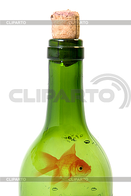 Bottle of wine and goldfish | High resolution stock photo |ID 3030550