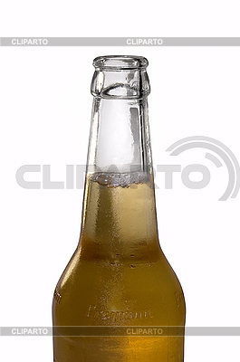 맥주 한 병   높은 해상도 사진  ID 3031559