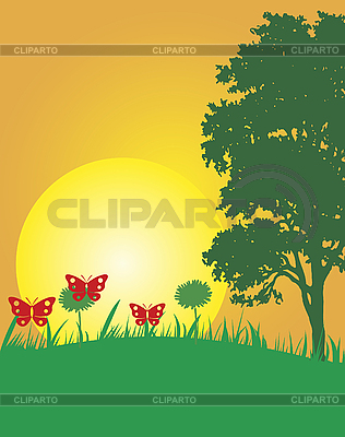 Summer | Stock Vector Graphics |ID 3035418