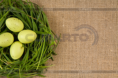 Grass nest with eggs | High resolution stock photo |ID 3020500