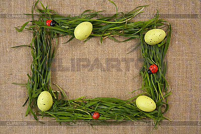 Grass frame with eggs and lady-bugs  | High resolution stock photo |ID 3020502