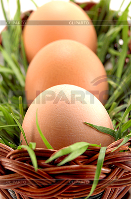 Three Easter eggs in basket with grass  | High resolution stock photo |ID 3023272