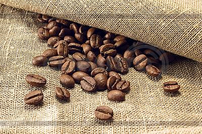 Coffee beans  | High resolution stock photo |ID 3023283