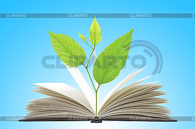 Book and plant | High resolution stock photo |ID 3019833