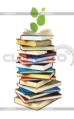 Stack of books and green plant | High resolution stock photo |ID 3019834
